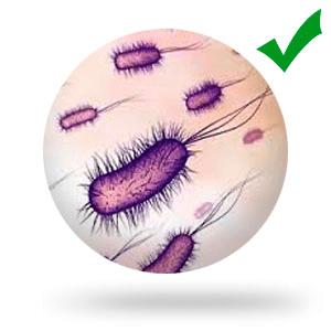 Убивает болезнетворные вирусы, грибки и бактерии