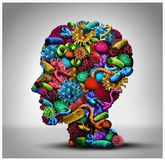 Микробиом человека и кишечника