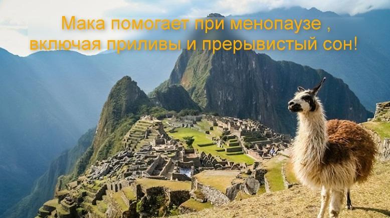 Мака перуанская для женщин!