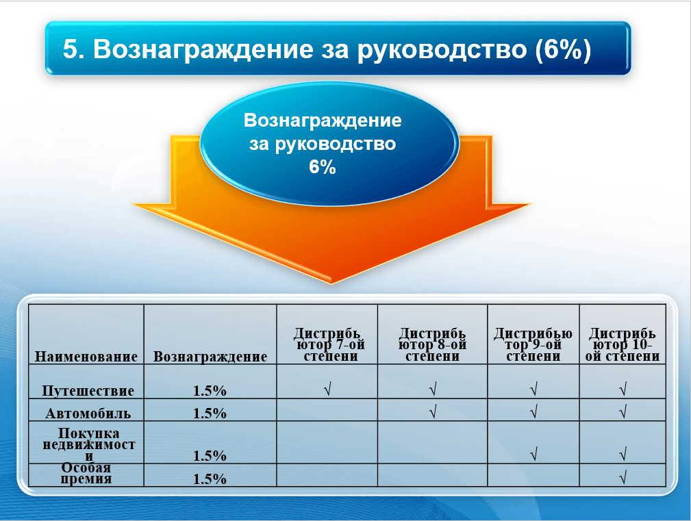 Вознаграждение за руководство 6%