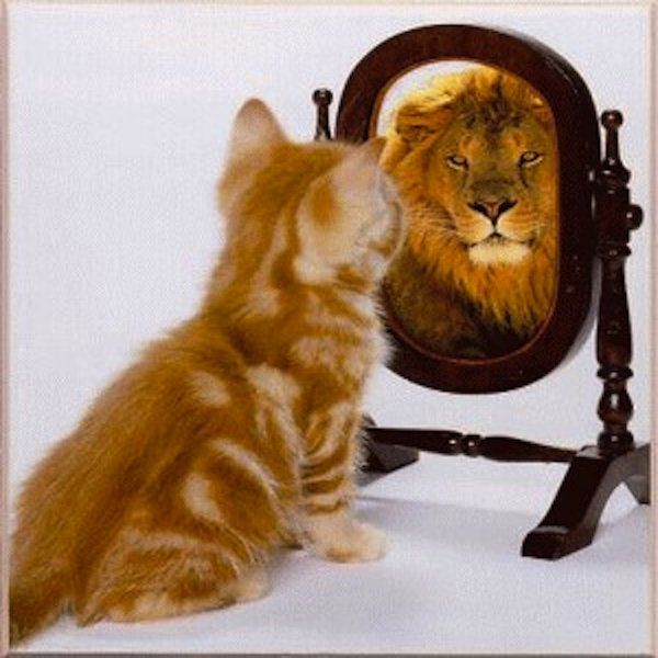 Как освоить мышление успеха