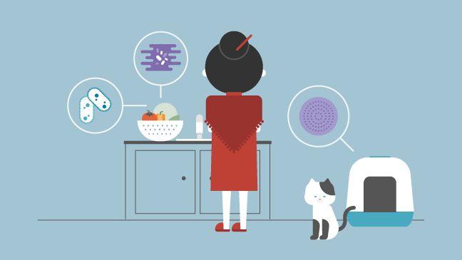 Паразиты и бактерии в вашей еде